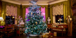 Lotherton Hall Drawing Room dressed for Christmas with tree, lights and gifts